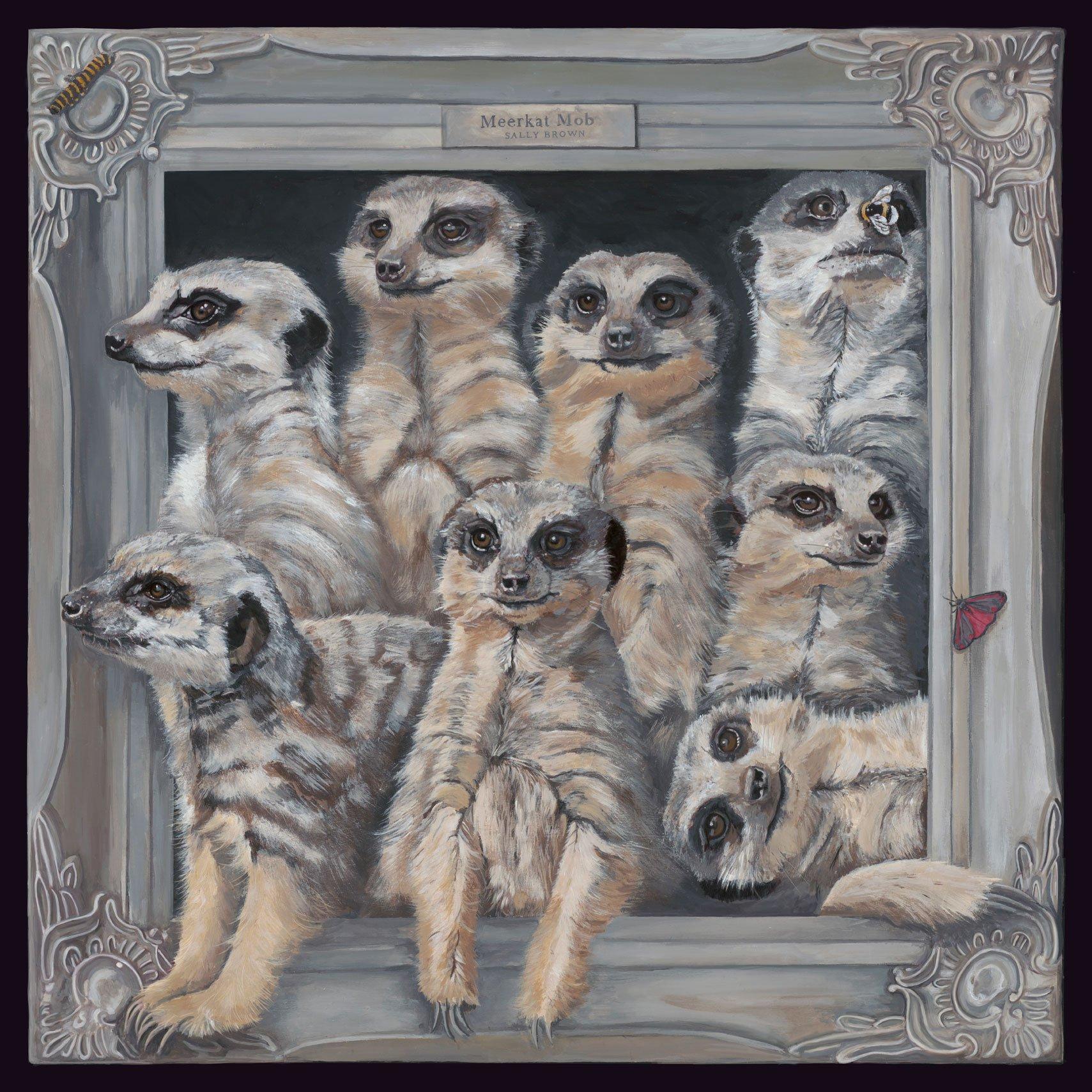 Meerkat-Canvas