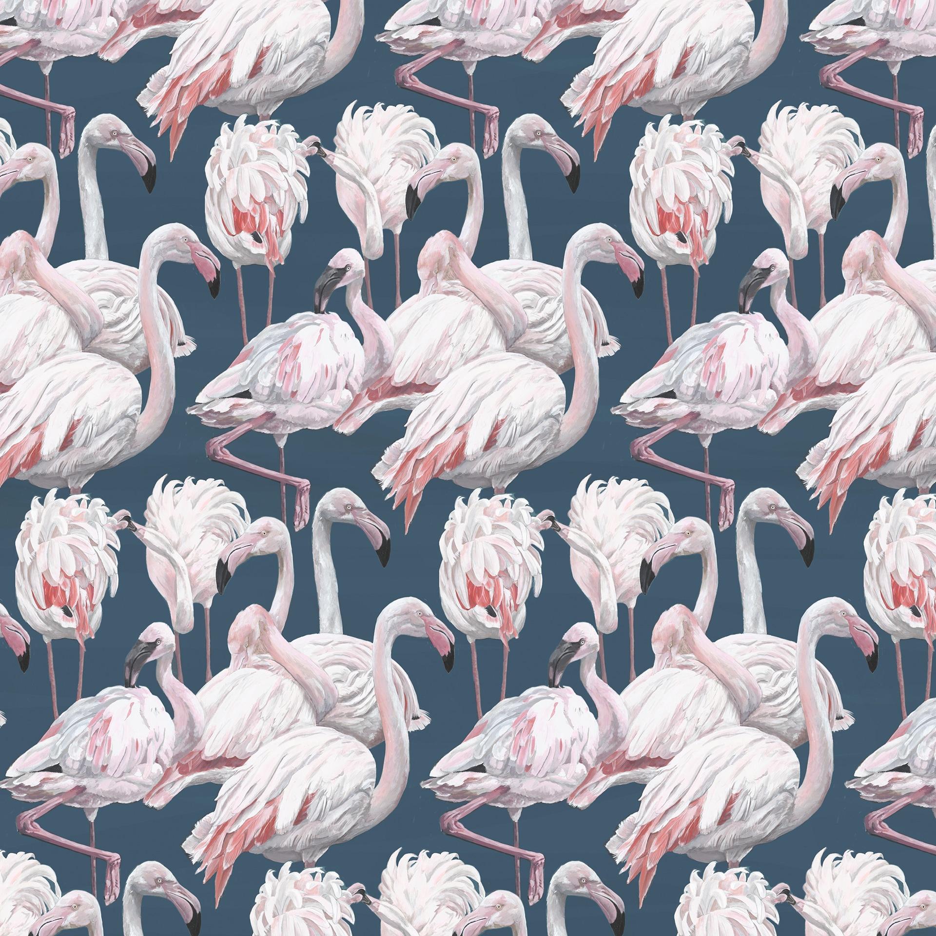 Flamingos-repeat-close