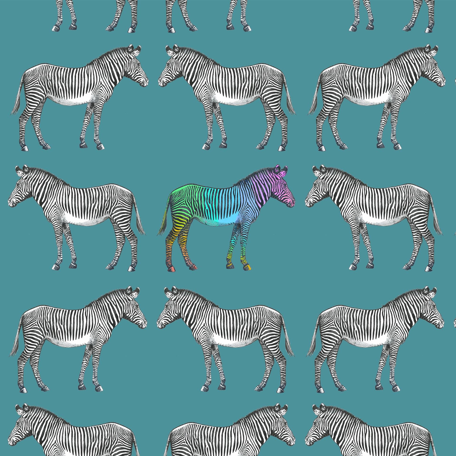 Zebra-Repeat-multi-closer
